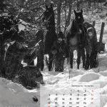 kalender-2016-13web