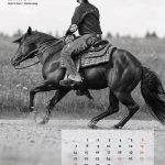 kalender-2016-4web