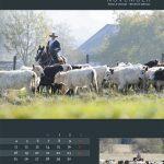 kalender2013-12web