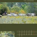 seitenlayout455x555-2014-10web